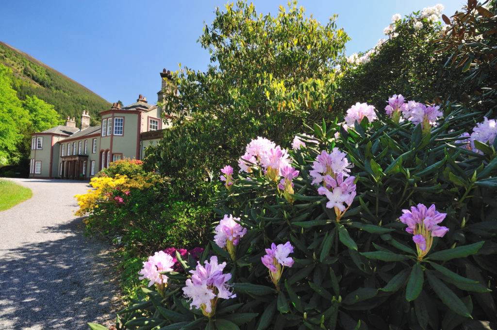 Mirehouse Gardens